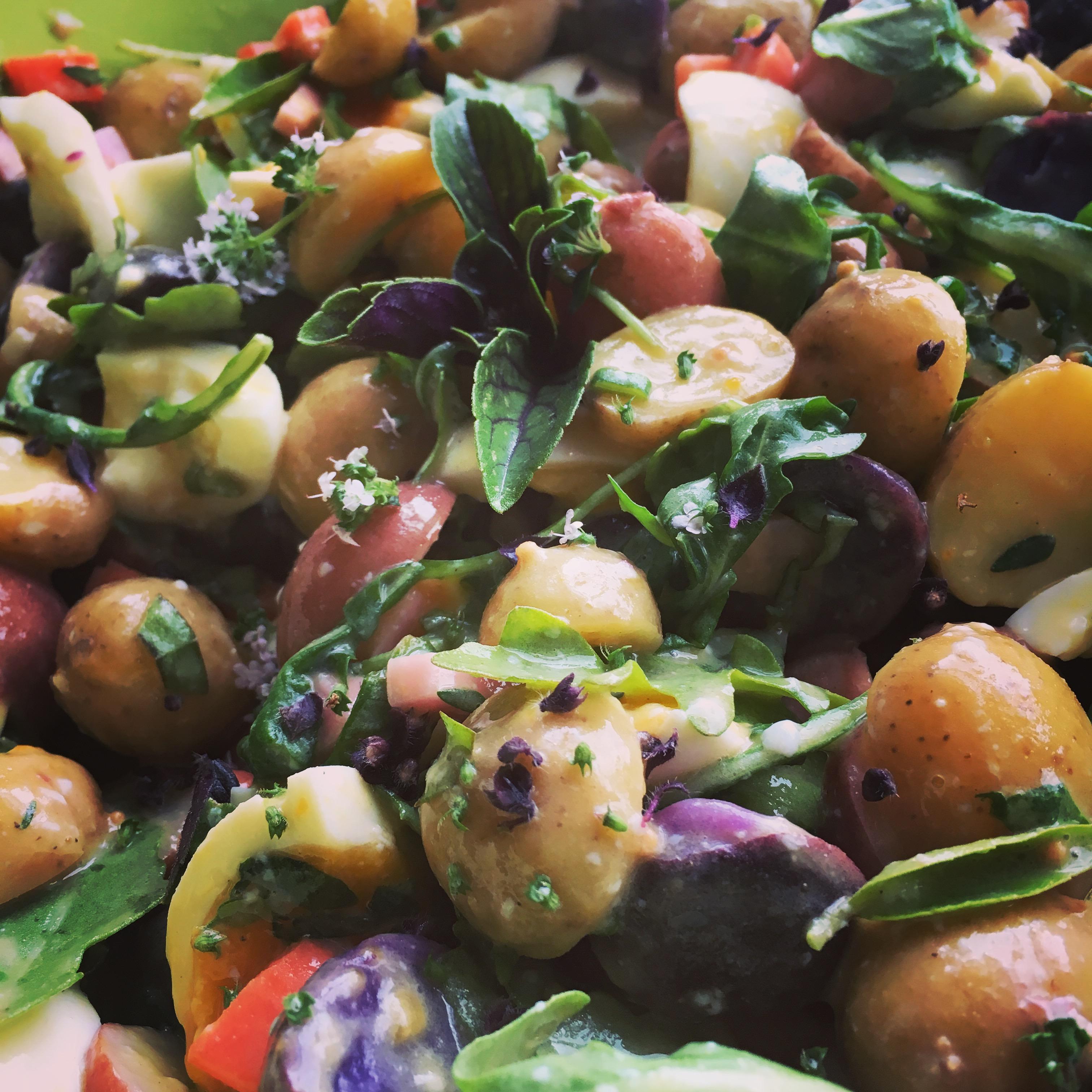 Baby, Tricolored Potatoes make the best potato salad!